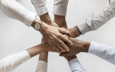 DISC Workshop   Improving Your Company's Culture